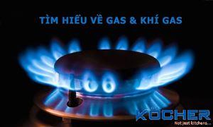 Khí Gas là gì? Khí Gas có mùi gì? Thành phần của Khí Gas