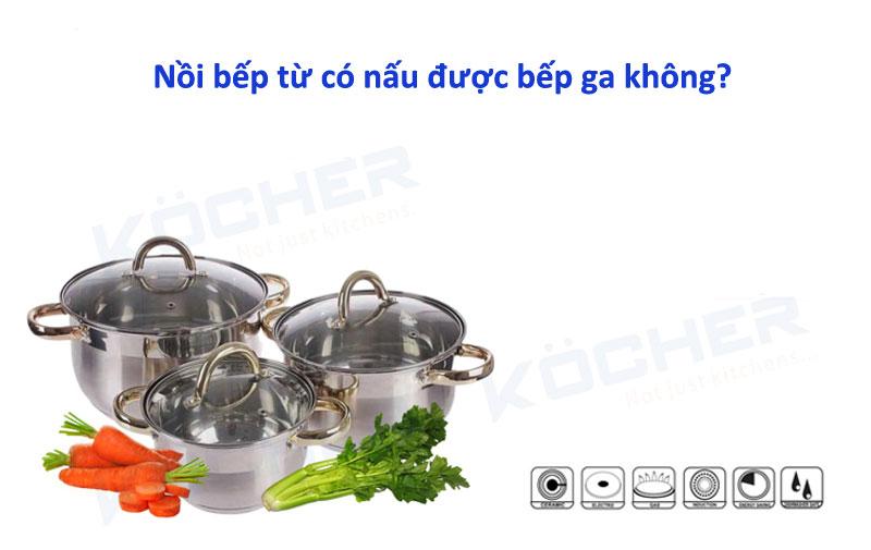 Nồi bếp từ có nấu được bếp ga không?